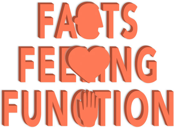 Facts Feeling Function