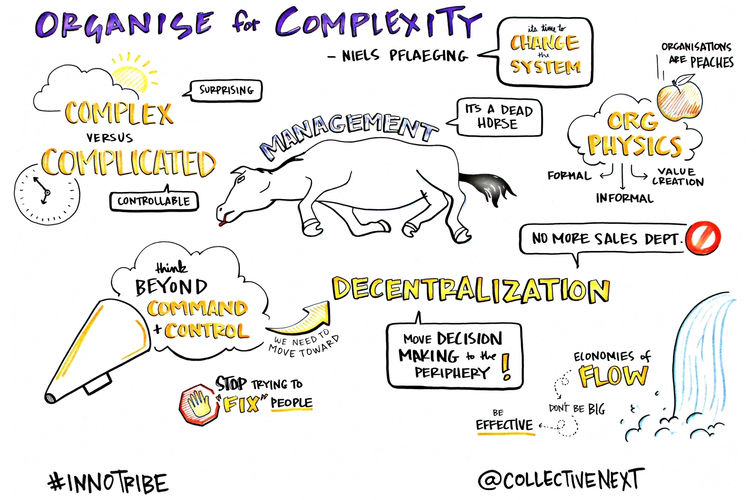Organise for Complexity Graphic Facilitation Scribing Innotribe Collective next